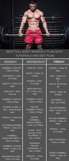 Full body men and women workout plan to get ripped