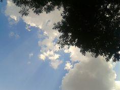 893bb78da 31 melhores imagens de Apenas céus...