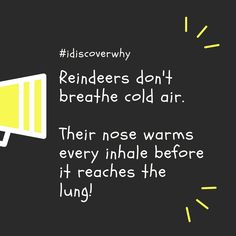 Did you know that? We need a nose like that in winters ! :) #didyouknow #mom #dad #kids #education #fun #fact