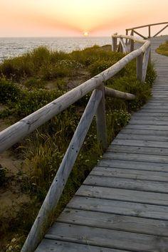 Atardecer en el palmar de Vejer.   El Palmar, una de las pocas playas vírgenes que quedan en nuestro litoral, ofrece a sus visitantes unas puestas de sol inigualables