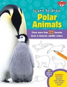 Learn to Draw Polar Animals: Draw More Than 25 Favorite Arctic & Antarctic Wildlife Critters (Learn to Draw)