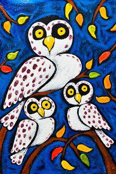 Keep Calm Collection - Owl Trio by Ben Mann Poster Print (http://www.keepcalmcollection.com/owl-trio-by-ben-mann-poster-print/)