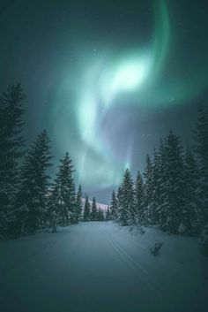 Night Photography, Nature Photography, Travel Photography, Tromso, The Great Outdoors, Northern Lights, Beautiful Places, Scenery, World