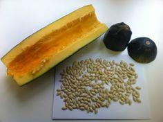 obtener semilla de calabacin