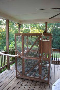 Awesome squirrel rehab cage | Wildlife Rehabilitation ...