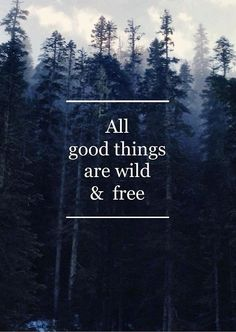 All good things are wold & free.