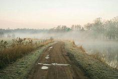 a dirt road, brown, green
