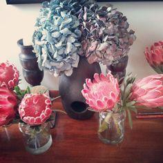 Proteas Vase, Home Decor, Decoration Home, Room Decor, Vases, Home Interior Design, Home Decoration, Interior Design, Jars