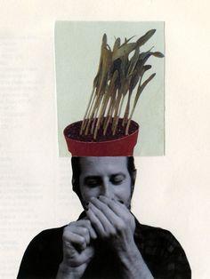 Weed,  Ivone Costa (JPQA), 2015
