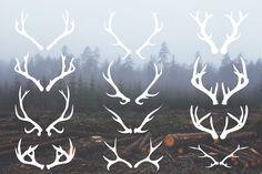 Deer Antlers - 12 Hand Drawn Vectors - Illustrations - 1