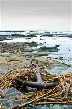Anchor on the Beach on West Coast Trail, Vancouver Island, BC by Joe McKenna