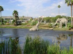 La Brea Tar Pits...Especially with Maybelle!