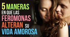 Las feromonas son señales químicas que influyen en su elección de pareja y sus niveles de la atracción sexual sin saberlo, pero ¿Cómo sucede esto? http://articulos.mercola.com/sitios/articulos/archivo/2015/02/28/feromonas.aspx