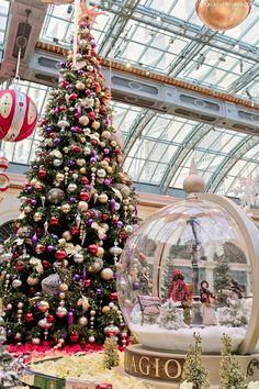 Bellagio Botanical Garden {5 Ways to Have the Perfect Christmas in Vegas) // localadventurer.com