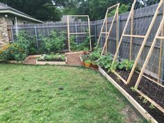 From Greenish Thumb Gardening. A custom designed, raised bed in a backyard garden.  Vine crops can grow up the trellis and down the raised beds.