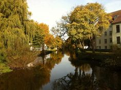 Odense River with fall colours.