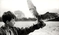 Kes - fantastic book - even better film
