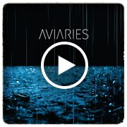 "► Play!: ""WHAT YOU BREATH WITH"" by Aviaries, from ""Aviaries"" - SUI GENERIS Mixtape Vol. 016 - Goth Rock, Post Punk, Wave compilation by DJ Billyphobia (SGM,VIRUS G ZINE) #wave #postpunk"
