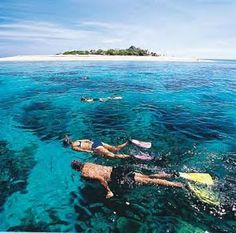 Fiji is known for its coral reefs, where some of the most intriguing and beautiful marine life can be found.