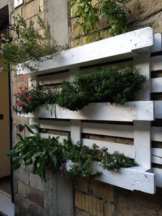 Herb garden in a wooden pallet, as seen in Italy!