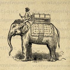Digital Elephant with Passenger Graphic Image Download Illustration Printable Antique Clip Art Jpg Png Eps 18x18 HQ 300dpi No.3561 @ vintageretroantique.etsy.com