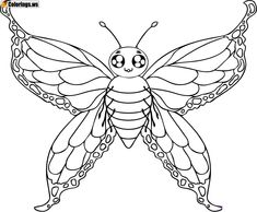 Awesome Butterfly Coloring Pages For Kids Printable Special Picture