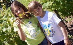 """T-Shirt """"Gascounet de Bordeaux"""" vert pomme (à gauche) et """"Chevalier de Villandraut"""" blanc à droite), enfant."""