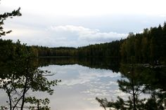 Nuuksio National Park. Finland.