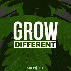 Grow Different