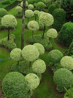 Topiary Garden, Topiary Trees, Garden Art, Garden Spheres, Garden Shrubs, Garden Paths, Garden Pictures, Parcs, Dream Garden