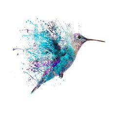 Humming Bird Splash Art Print by John Gray - X-Small Watercolour Tattoos, Watercolor Art, Animal Watercolour, Watercolor Tattoo Shoulder, Splash Watercolor, Small Watercolor Tattoo, Splash Art, Watercolor Hummingbird, Hummingbird Art