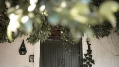 Take a walk, meet your neighbours. The 'burbs, Christmas Tree, Meet, Magazine, Holiday Decor, Travel, Home Decor, Teal Christmas Tree, Viajes
