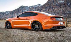 Mustang Dez