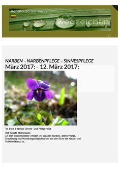 NARBENPFLEGE - SEELENPFLEGE Workshop - Schweiz - März 2017