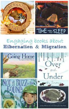 Wonderful Books about Hibernation and Migration
