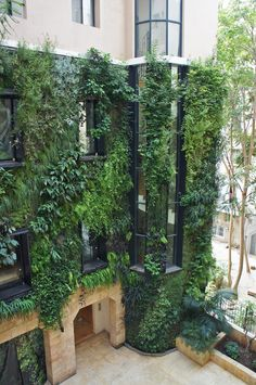 Vertical Garden in the patio of a private house, left side, Beirut