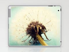 wishes Laptop & iPad Skin by Beverly LeFevre - $25.00