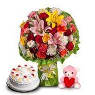 Find the best Valentine Teddy Day