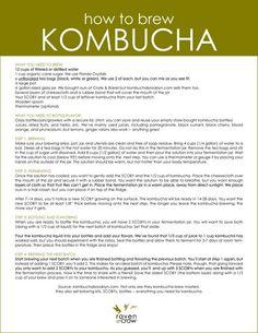 Fermented foods are so paleo! Kombucha