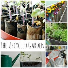 Upcycled Garden Crafts - a great way to get planting thing spring. Turn old to new and grow.