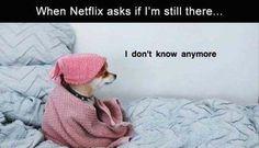 HA that dog is me