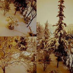 ;) #kar #kış