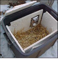 How to Build a Feral Cat Shelter for the Winter