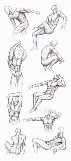 78 Best Male Anatomy Reference Images On Pinterest In 2018