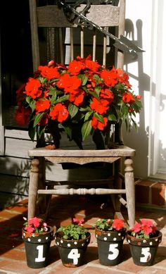 Antique Chair with House Number Front Door Flower Pots