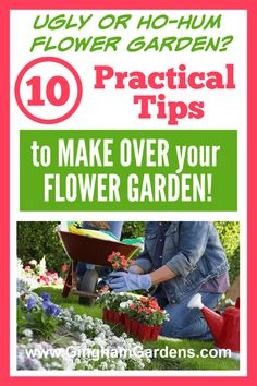 Do you have an overgrown flower garden, or a weed pit garden, that is in need of a major makeover, redo or transformation? Learn how to do your own DIY backyard makeover and how to clean up overgrown flower beds. #diyyardcrashers #ginghamgardens Flower Garden Plans, Flower Garden Design, Best Perennials, Flowers Perennials, Garden Makeover, Backyard Makeover, Gardening For Beginners, Gardening Tips, Flower Gardening