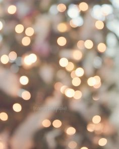 Christmas Lights Photography Print - Bokeh Tree - by JessaMae Photography