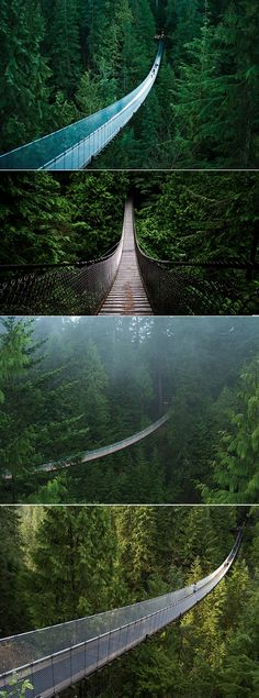 The Capilano Bridge in Vancouver - want to go! I'm from Vancouver! Places Around The World, Oh The Places You'll Go, Places To Travel, Places To Visit, Around The Worlds, Pont Paris, Voyage Canada, Scary Places, Whistler