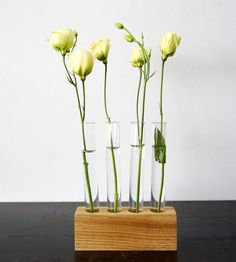 Test Tube Flower Vase Set | Home Garden & Patio | Moss & Twig | Scoutmob Shoppe