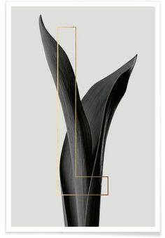 Plants L als Premium Poster von typealive | JUNIQE juniqe.de